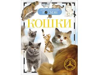 55040 Кошки (ДЭР)