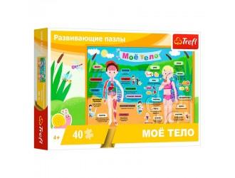 15528 Trefl 40 Educational Corpul