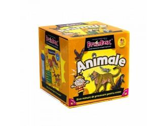 Brainbox Animale