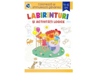177063 Labirinturi si activitati logice 4-6 ani