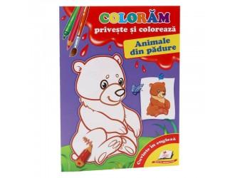 73388 Priveste si coloreaza. Animale din padure