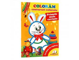 73397 Contururi colorate. Primele mele cuvinte (Ni