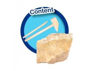 "25028S Set educativ din seria ""Explore"" descopera  053868"
