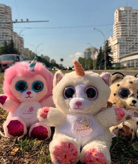 """Jucăriile de pluș """"Sweet Scents"""" au vizitat Porțile Orașului"""