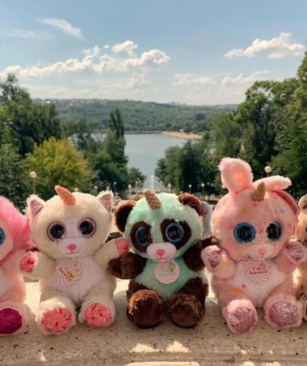 Felicitări cu 1 septembrie! Echipa Toyland Moldova le dorește tuturor elevilor un an școlar plin de performanțe